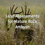 Land Assessments for Mature Buck Ambush